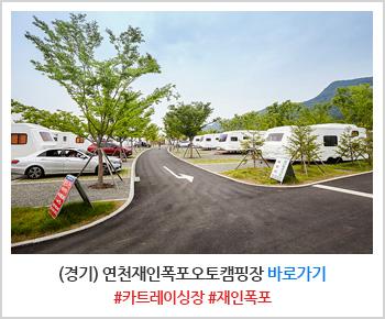연천재인폭포오토캠핑장 사이트